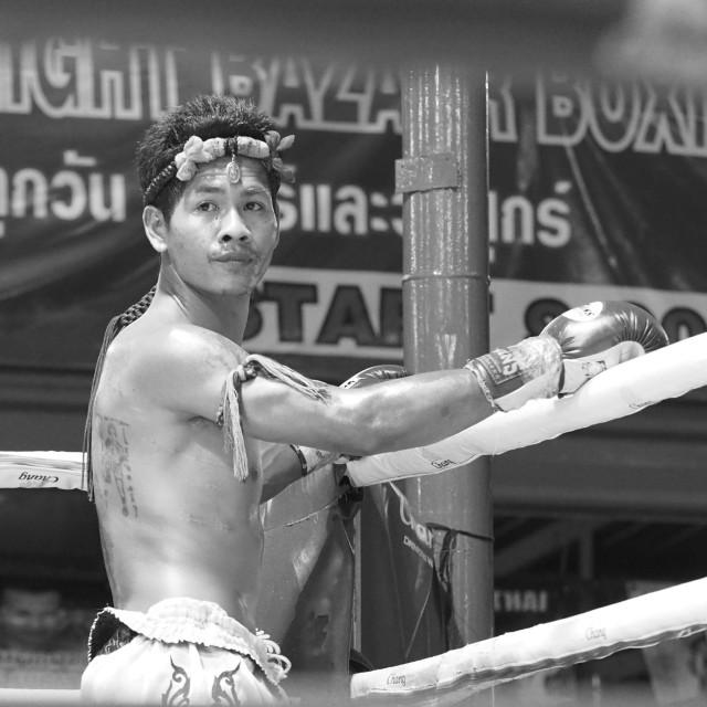 """Muay Thai Boxing"" stock image"