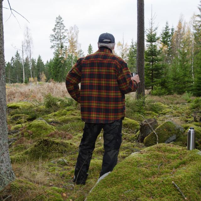 """Lumberjacks break"" stock image"