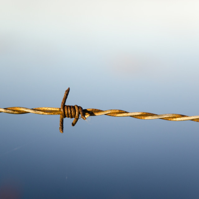 """Barb wire detail"" stock image"