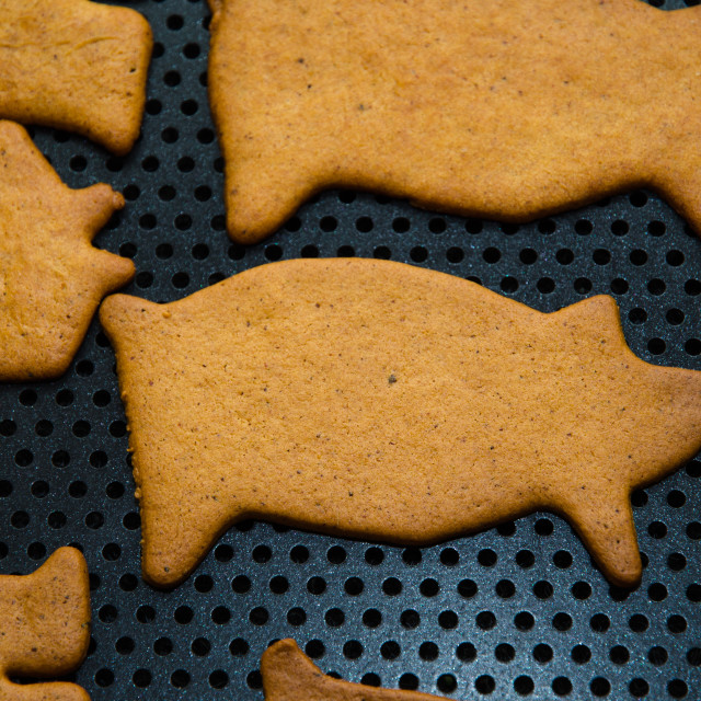 """Gingerbread pig figure"" stock image"