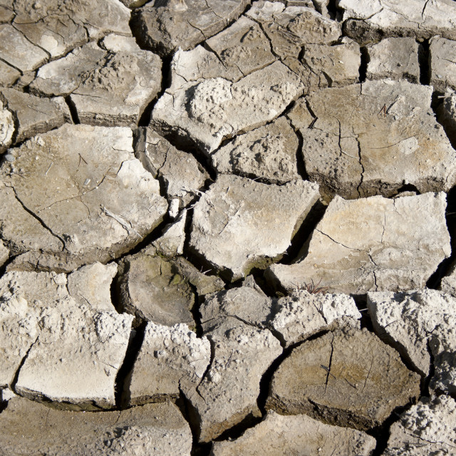 """Mud cracks"" stock image"