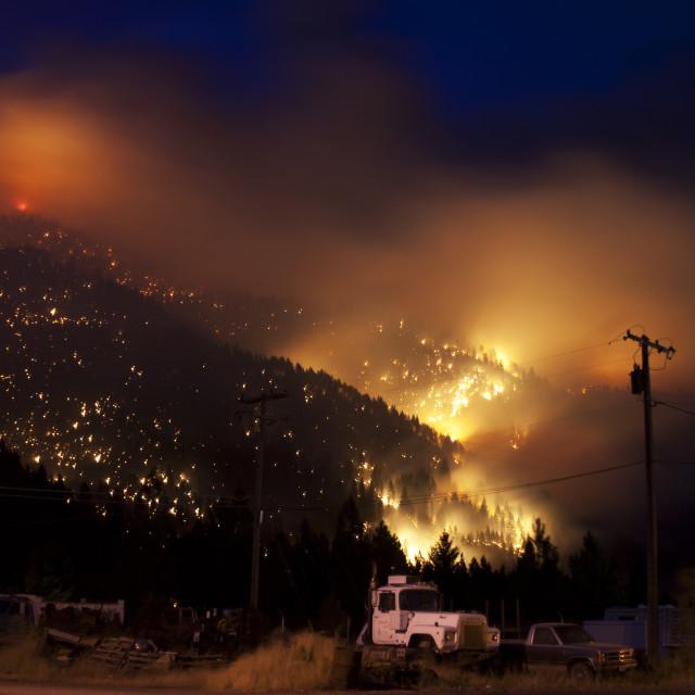 """Wild fire"" stock image"
