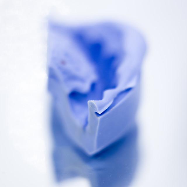 """Dental prosthetics gel tooth mold"" stock image"