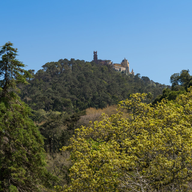 """Pena National Palace"" stock image"
