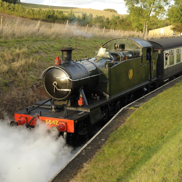 """""""Steam train at Washford station on the West Somerset Railway."""" stock image"""