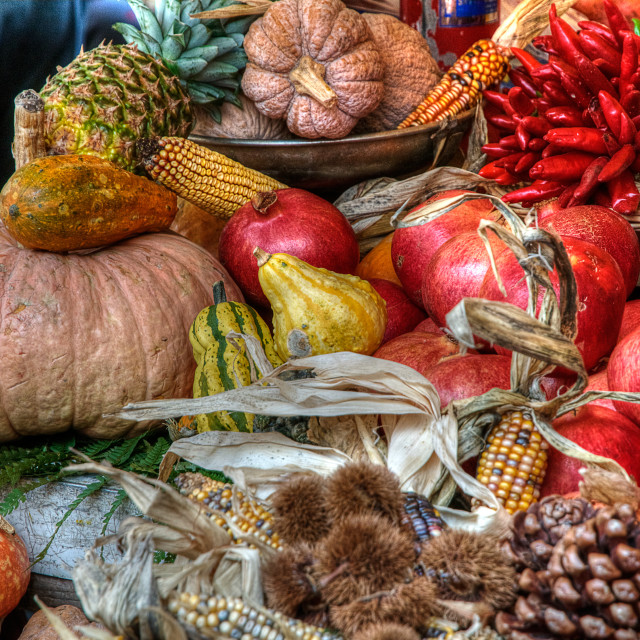 """""""pumpkins pomegranates and other fruit"""" stock image"""