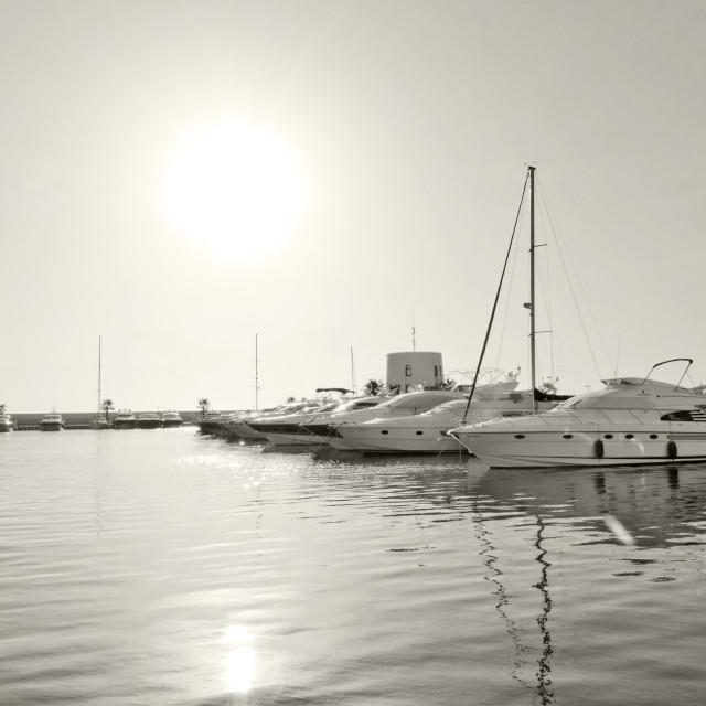 """Yachts and sailboats in the marina"" stock image"