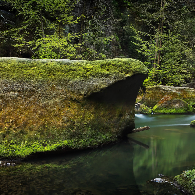 """Mossy river"" stock image"