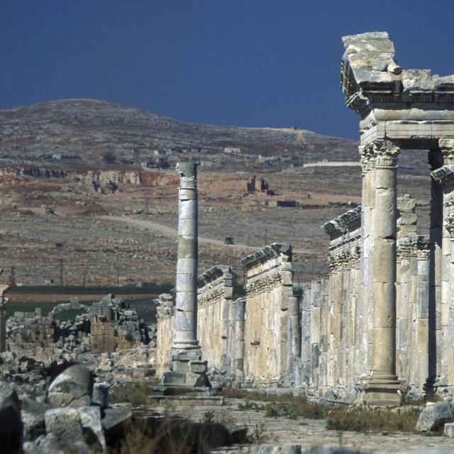 """""""MIDDLE EAST SYRIA HAMA APAMEA RUINS"""" stock image"""