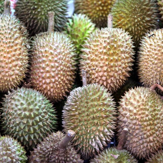 """""""ASIA SINGAPORE LITTLE INDIA FRUITMARKET"""" stock image"""