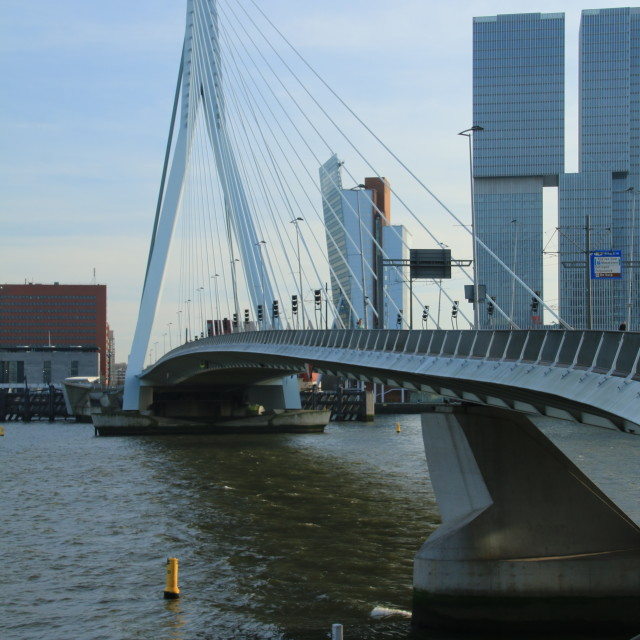"""Erasmus Bridge"" stock image"