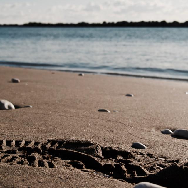 """""""mare d'inverno"""" stock image"""