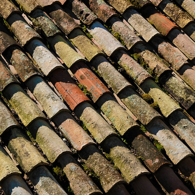 """""""Detail of a roof with old tiles"""" stock image"""