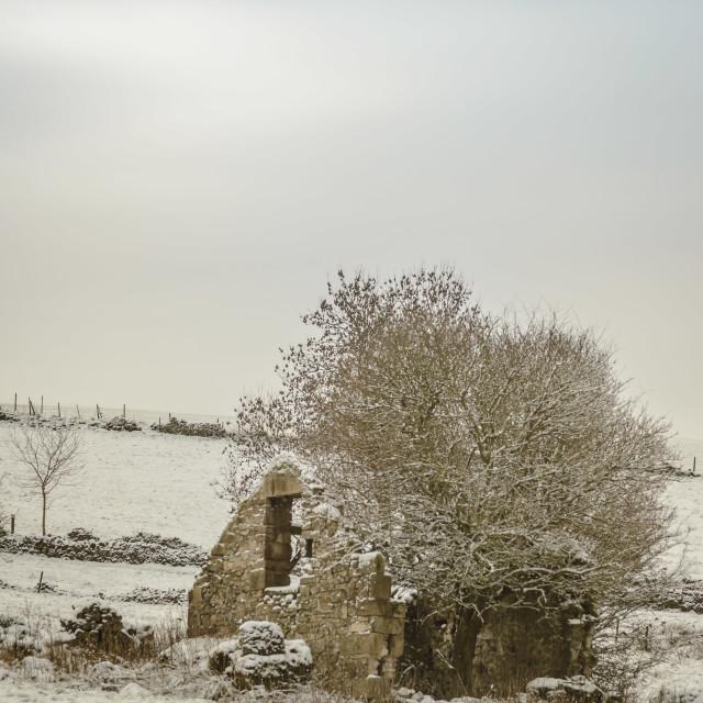 """Barn Storm Snow"" stock image"