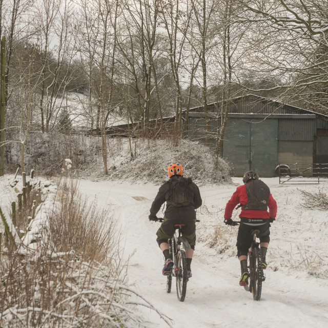 """""""Snow Cycles"""" stock image"""