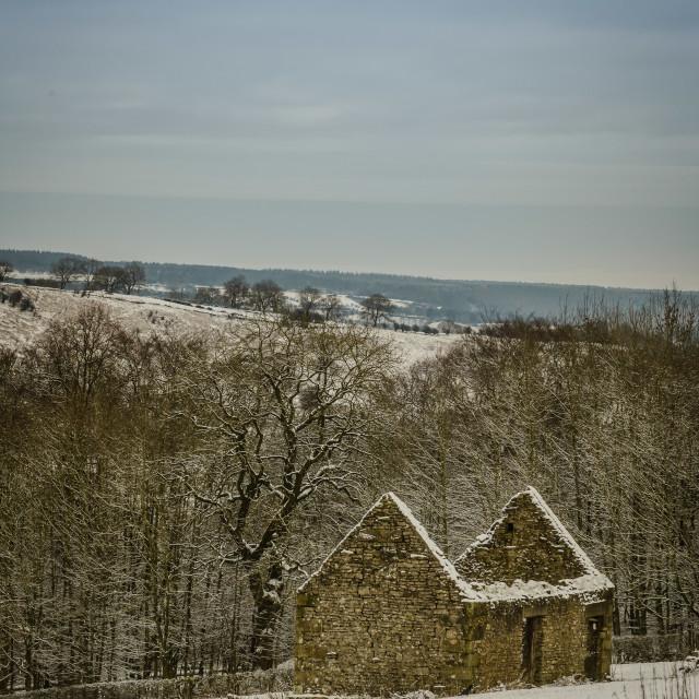 """Snow Barn"" stock image"