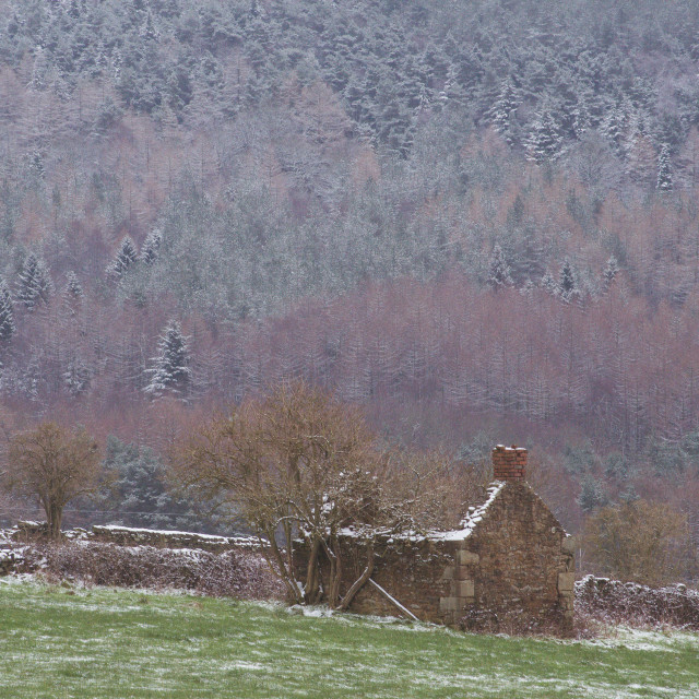 """Derbyshire Old Barn"" stock image"