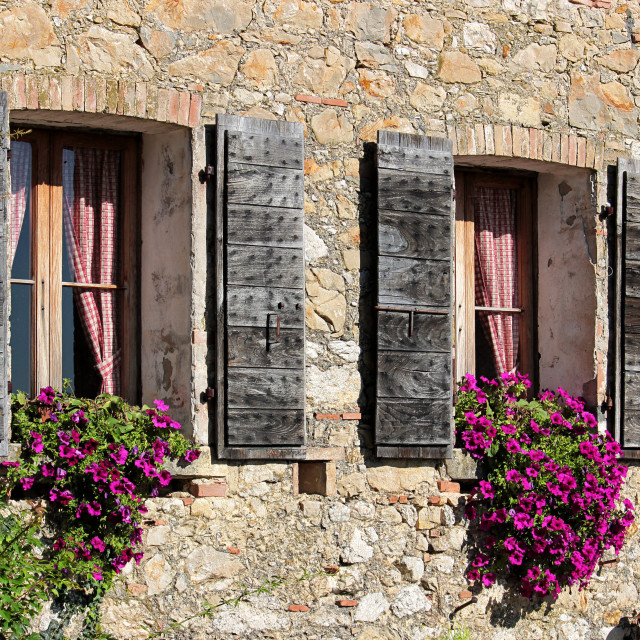 """""""Detail of the facade of an old rural house"""" stock image"""