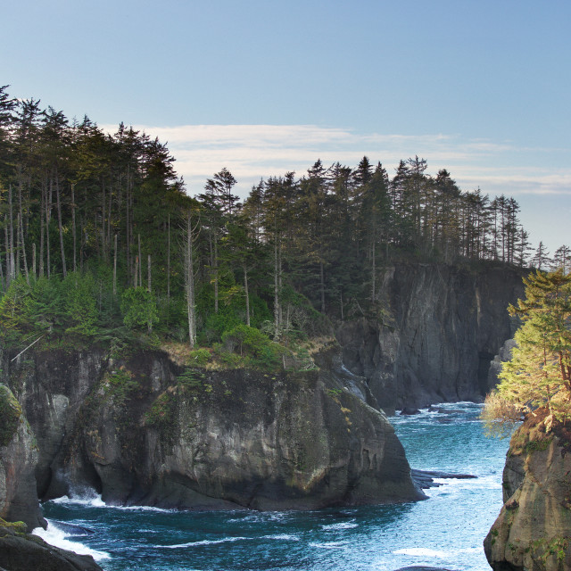 """Cape Flattery"" stock image"