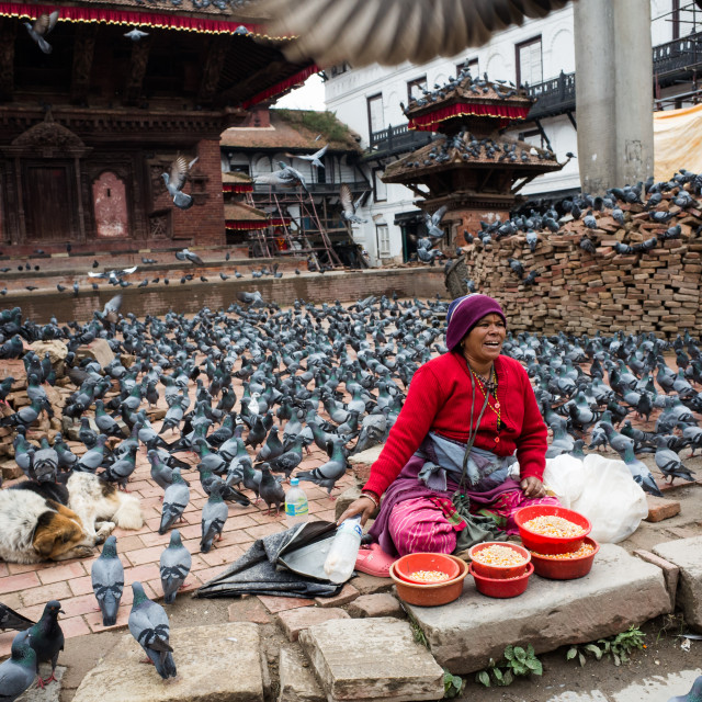"""Pigeons, Dog and Woman III"" stock image"