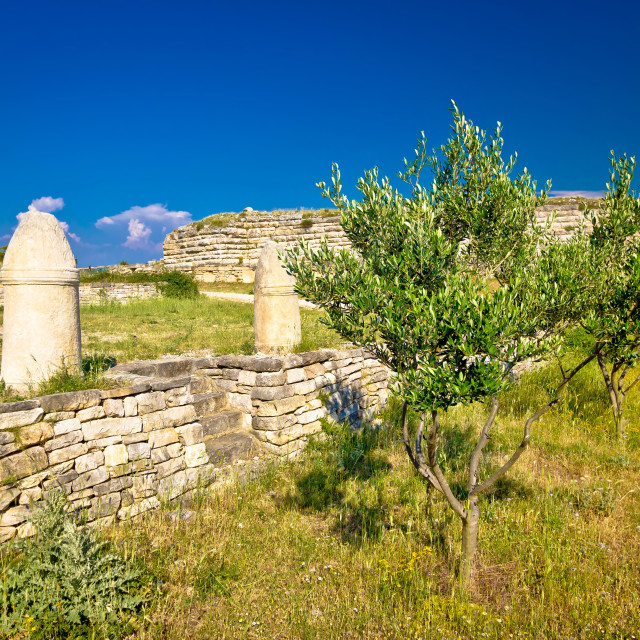 """""""Stone artefacts of Asseria ancient town"""" stock image"""