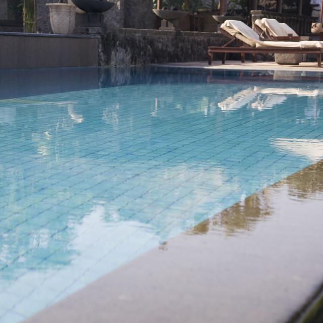 """tropical swimmingpool"" stock image"