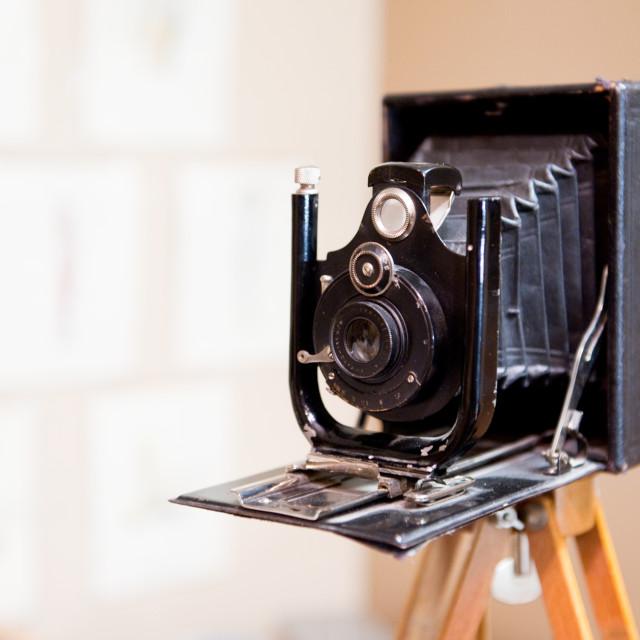 """Antique photo camera"" stock image"