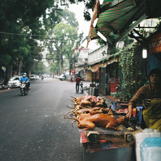 """Street butcher"" stock image"