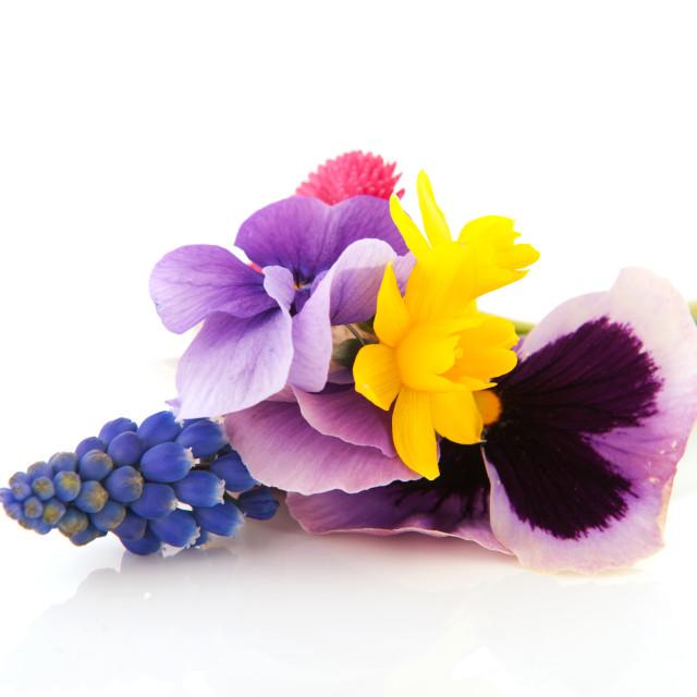 """Bouquet garden flowers"" stock image"