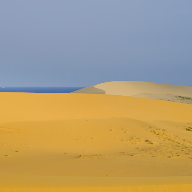 """""""Sand dunes by the sea"""" stock image"""