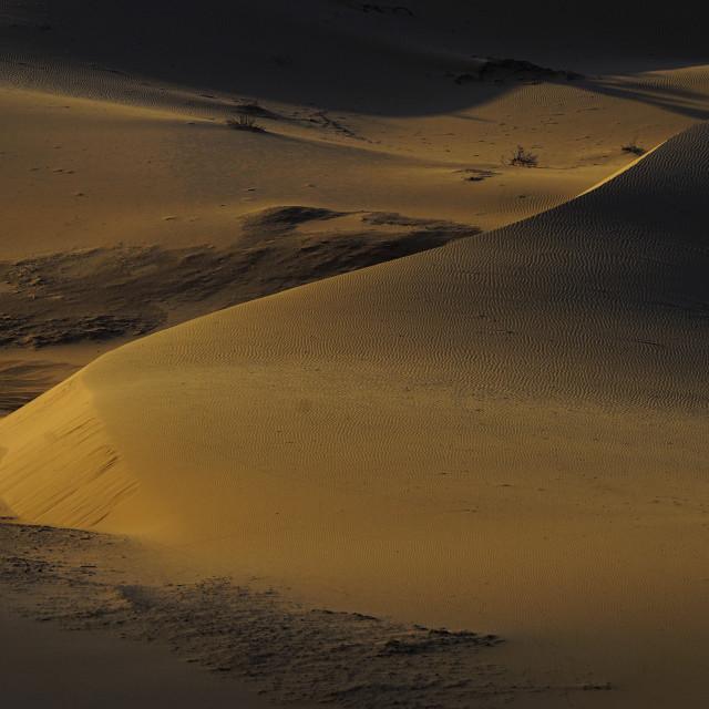"""Yellow sand dune on sunset"" stock image"