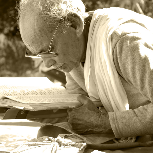 """Old Man Reading"" stock image"