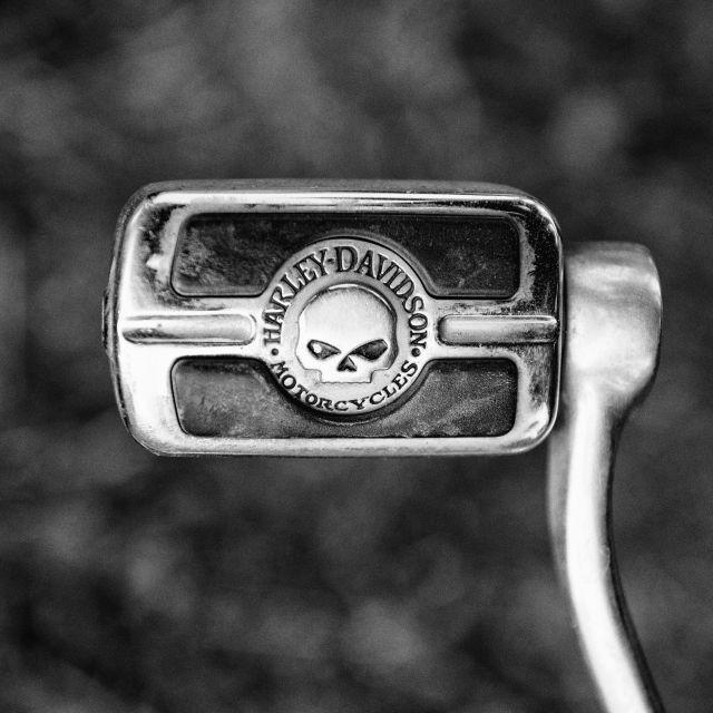 """HD Skull"" stock image"