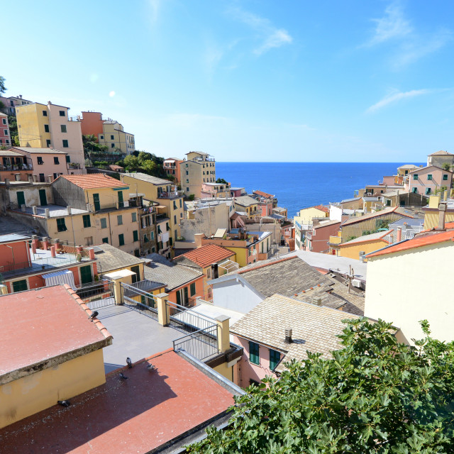"""""""Looking into Riomaggiore, small Italian riviera town"""" stock image"""