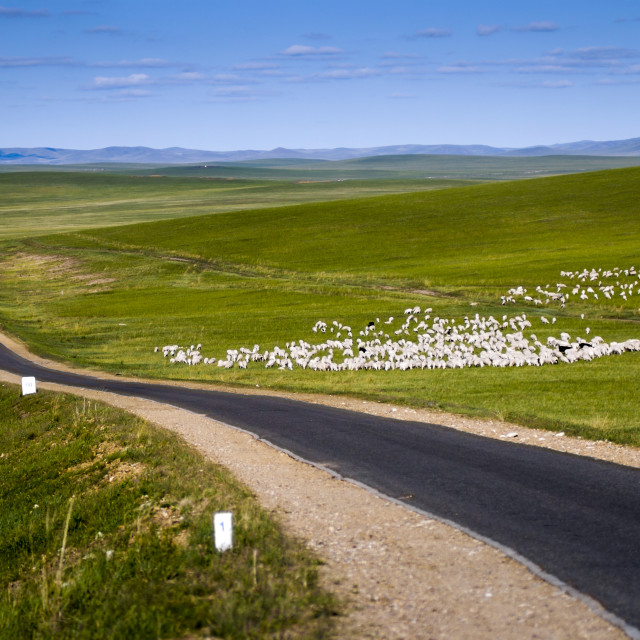"""Grassland in Inner Mongolia, China"" stock image"