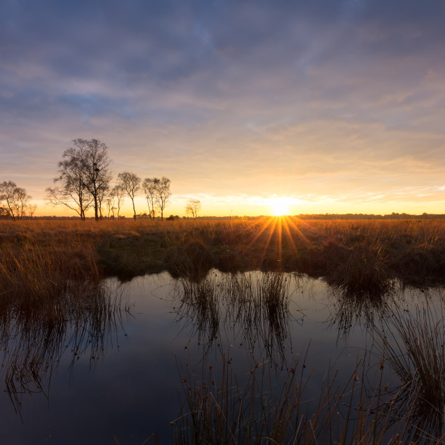 """Strensall Sunset"" stock image"