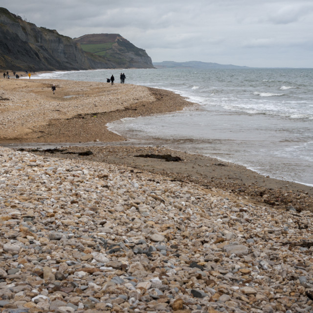 """Fossil hunting at Charmouth."" stock image"