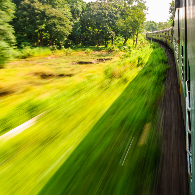 """""""View through window of a speeding train passing through forest with copy space"""" stock image"""