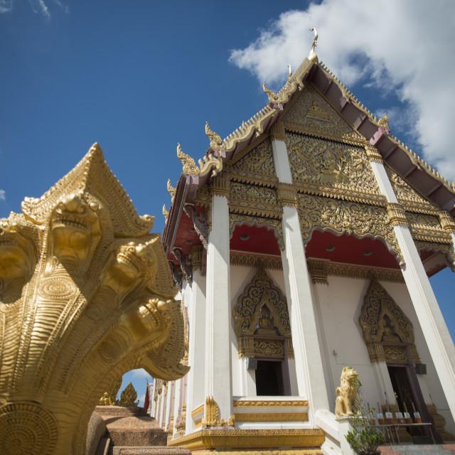 """THAILAND ISAN SURIN WAT BURAPHARAM"" stock image"