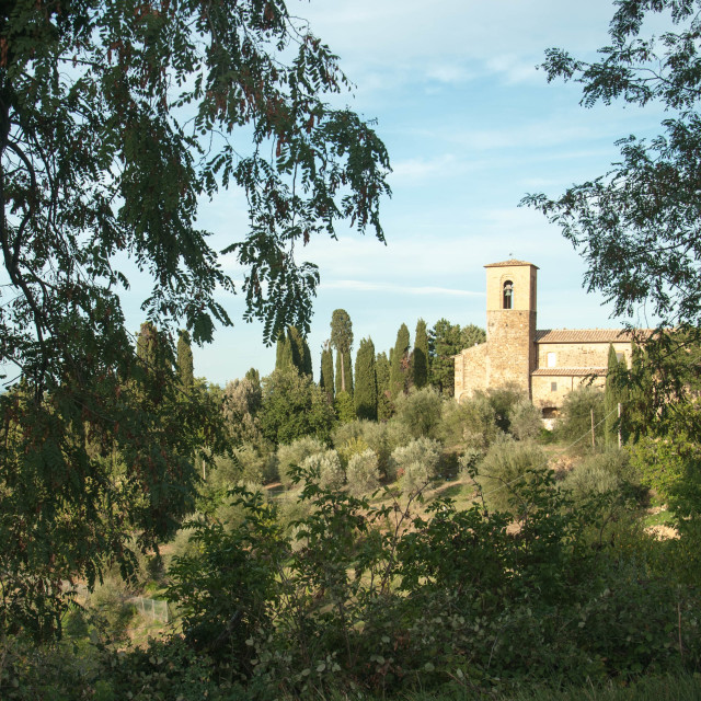 """""""Tuscany Italy"""" stock image"""