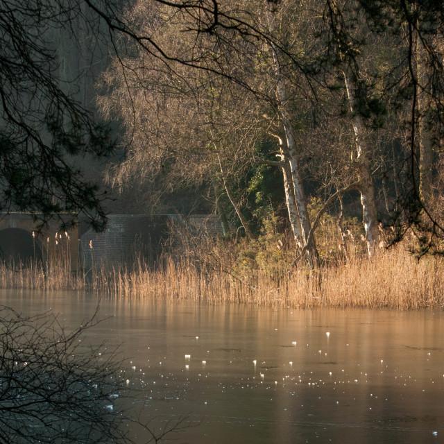 """Stockgrove Lake Stockgrove Park Bedfordshire"" stock image"