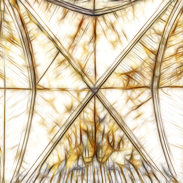 """cathedral ceiling"" stock image"