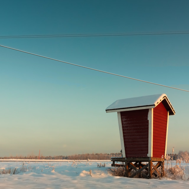 """""""Milk Shelter And A Telephone Pole"""" stock image"""