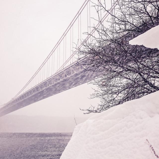 """Winter Magic"" stock image"
