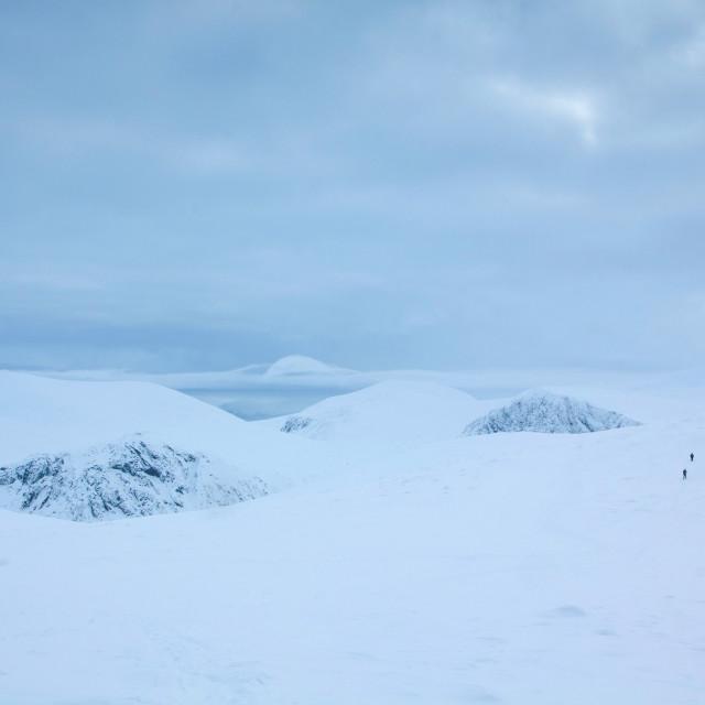 """""""Cairngorm Plateau"""" stock image"""