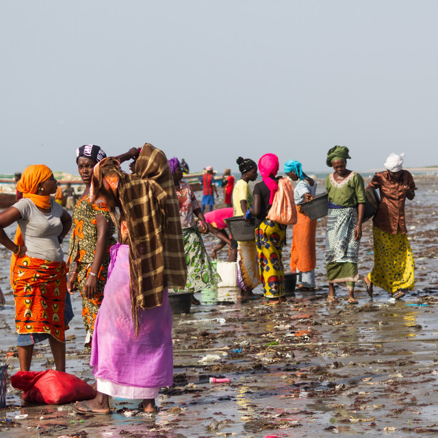 """Gambian Women Waiting For The Fish"" stock image"