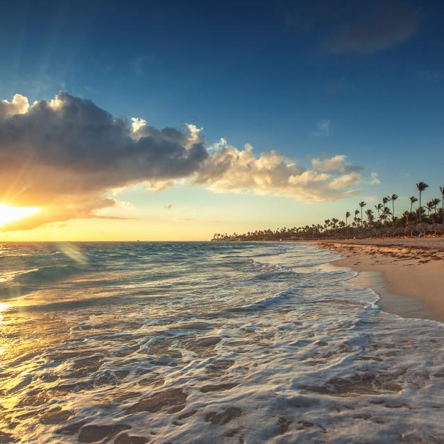 """Exotic Beach in Dominican Republic, Punta Cana"" stock image"