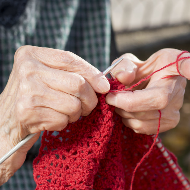 """Old woman hands knitting a red sweater"" stock image"