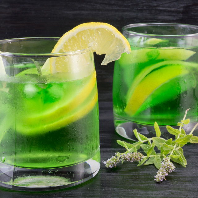 """""""Homemade mojito in a glass on and fresh mint plant"""" stock image"""