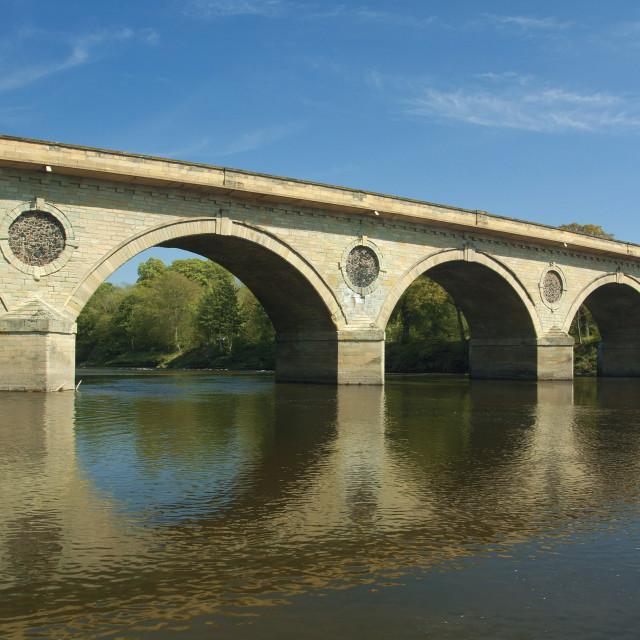 """""""Coldstream Bridge"""" stock image"""